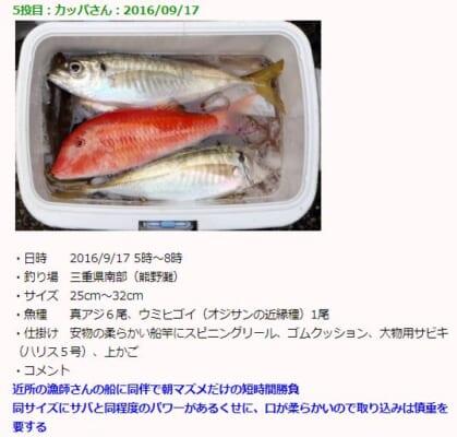 釣りまとめ速報・釣果一例画面